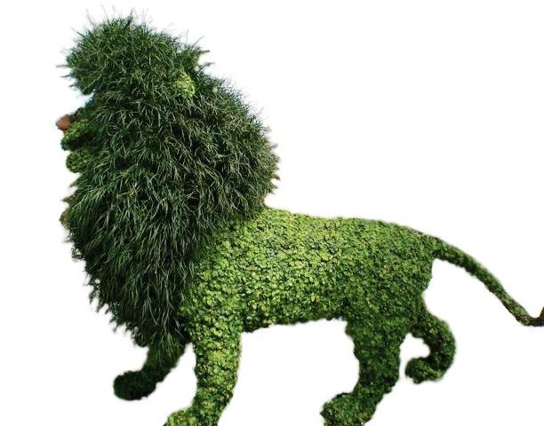 bush 10a