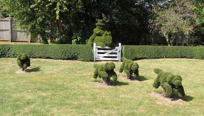 bush 4a
