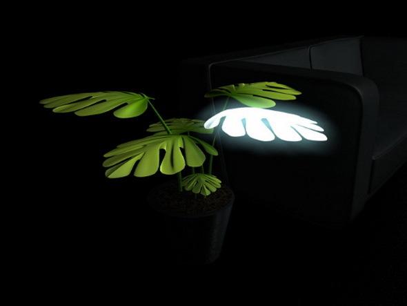 lampypokojowe1