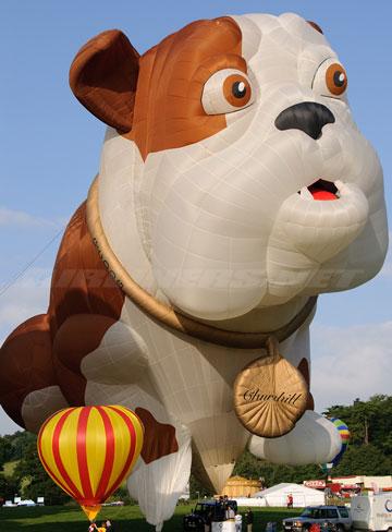 doggy-balloon