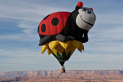 lady-bug-balloon
