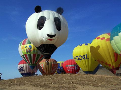 panda-balloon