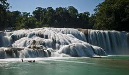 Agua-Azul-Waterfalls-in-Mexico