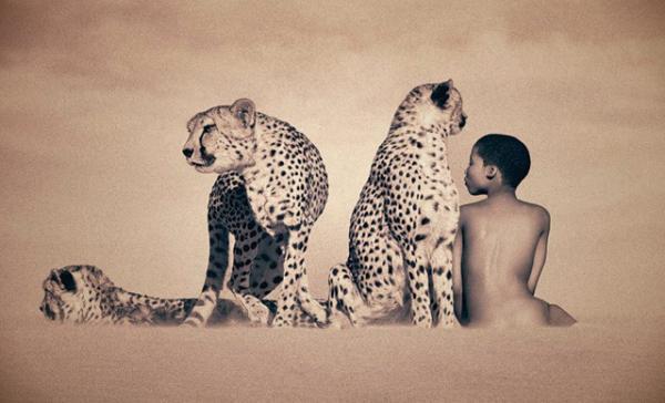 people animal art