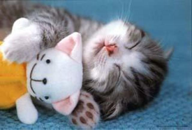 f_cutesleepinm