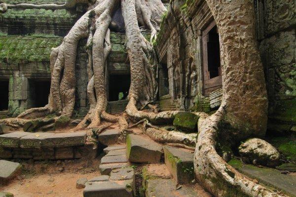 siem_reap_ cambodia