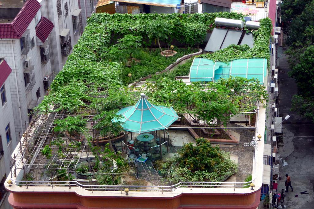 Rooftop-Garden3