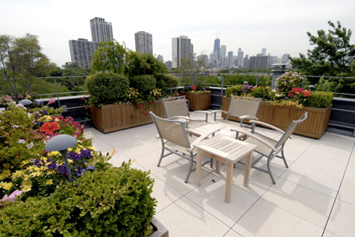 chicago- rooftop garden